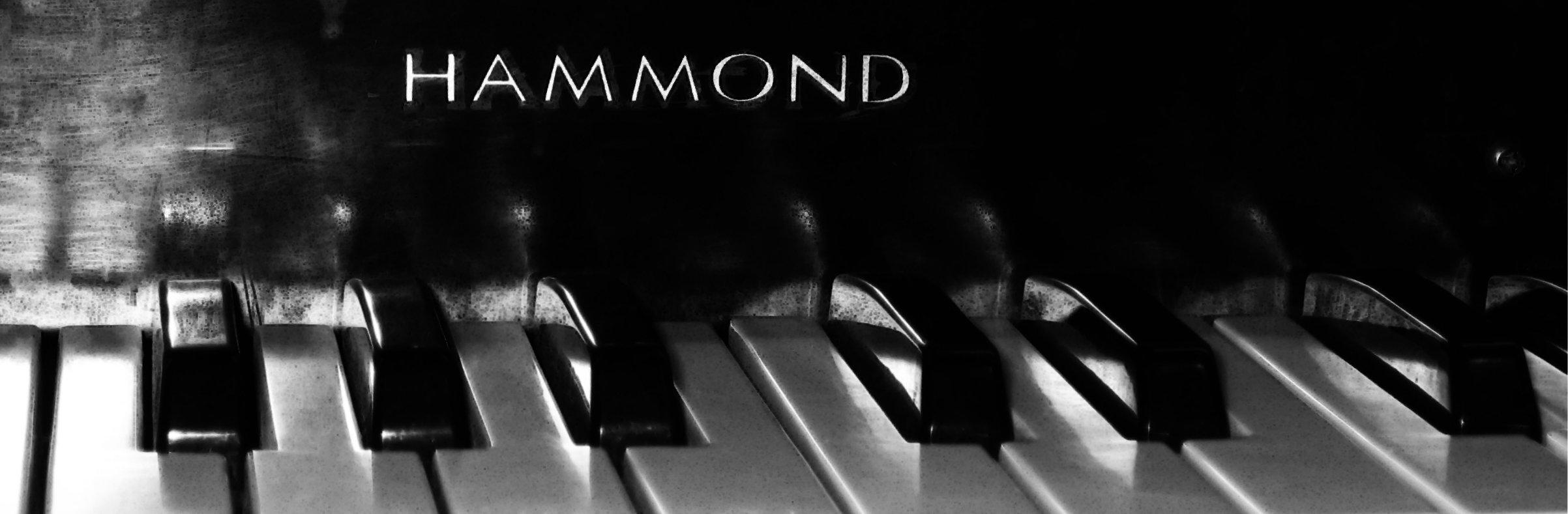 buy hammond organ leslie speaker guitar amps amplifiers